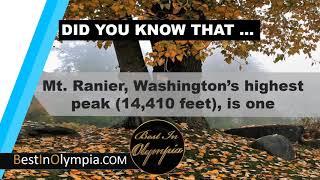 Washington's highest peak | Best In Olympia | Olympia WA