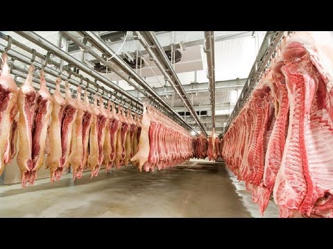 Amazing Modern Sausage Production Factory, Fastest Pork Meat Cutting Processing Technology