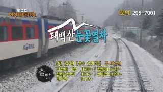 2015 MBC경남 여성테마기행 - 태백산 눈꽃열차