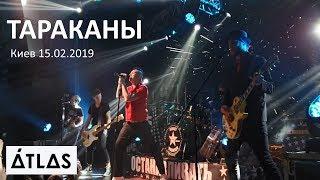 Концерт группы Тараканы в клубе ATLAS. Киев 15.02.2019