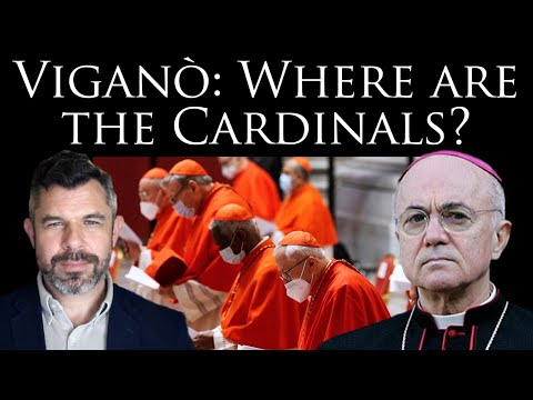 Viganò: Where are the Cardinals? Why so much silence?