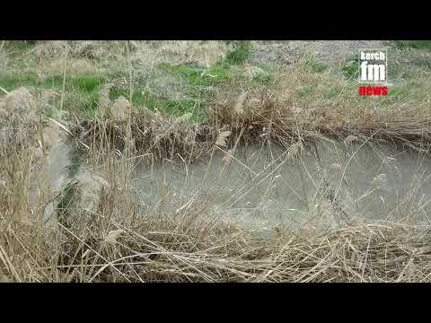 Kerch.FM: Загаженная речка в Керчи
