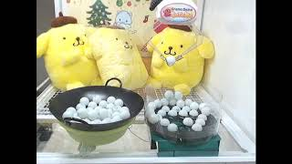 Nothing but Ping Pong WINS on Toreba!!!