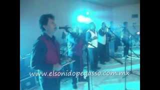 EL PEGA PEGA - LA NOCHE DEL SABADO
