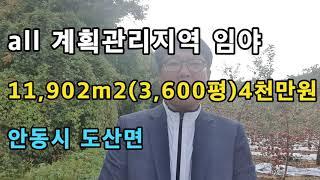 경북 안동시 도산면 안동부동산 안동땅 시골땅 매매