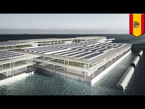 Smart Floating Farm: Forward Thinking Architecture's invention could help feed the world - TomoNews