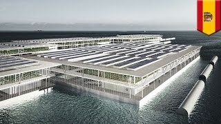 Smart Floating Farm Forward Thinking Architectures invention could help feed the world - TomoNews