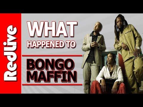 What Happened to Bongo Maffin