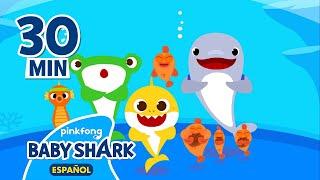 Especial del Día Mundial de los Océanos   Tiburón Bebé   Canciones Infantiles  Baby Shark en español