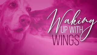 You Got This: Waking Up With Wings