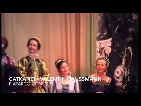 Catkanei - Valentin Haussmann