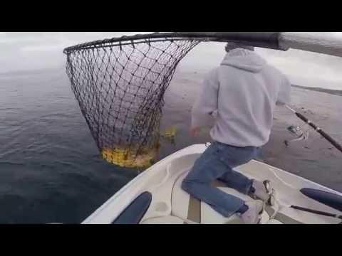 La Jolla Kelp Bed Fishing