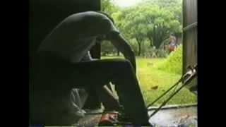 LOS DESEOS DEL CAMINO de Claudio Perrin (Formato original: S- VHS año 2001)