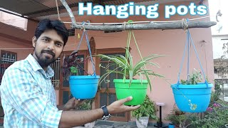 hanging-pots---how-to-grow-plants-in-hanging-planter-best-soil-mixture-for-hanging-pots