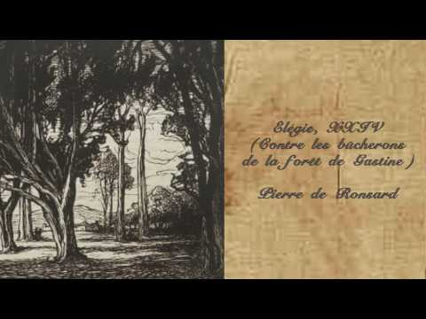 Elégie, XXIV (Contre les bûcherons de la forêt de Gastine), Pierre de Ronsard