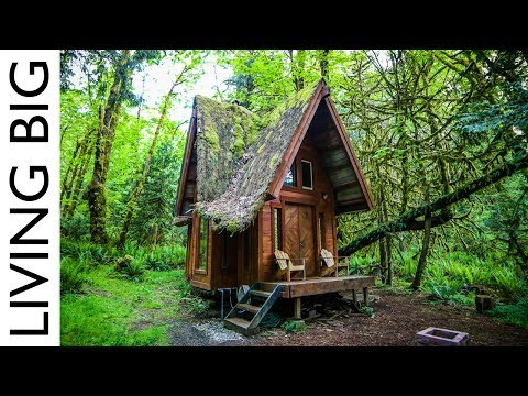 Enchanting Cabin In The Forest from YouTube · Duration:  13 minutes 41 seconds