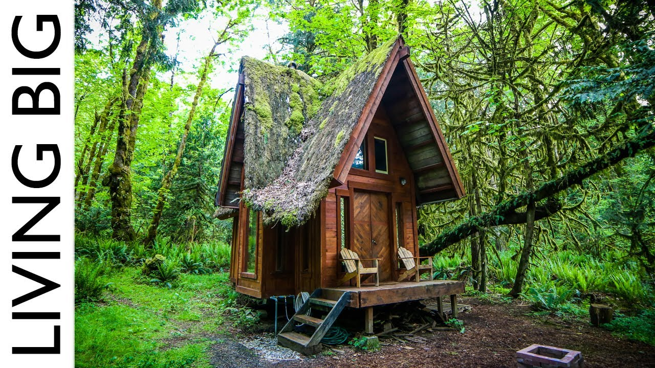 Enchanting Cabin In The Forest Youtube