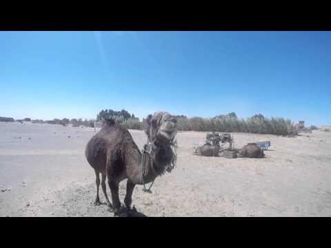 Maroka 28.03. - 07.04.2016 Jekaba Celojumi