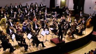 The Pink Panther theme song Shinya Ozaki symphony orchestra Marosvásárhely 2013 HD