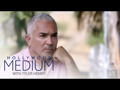 "Cesar Millan Connects to ""Daddy"" on ""Hollywood Medium"" 