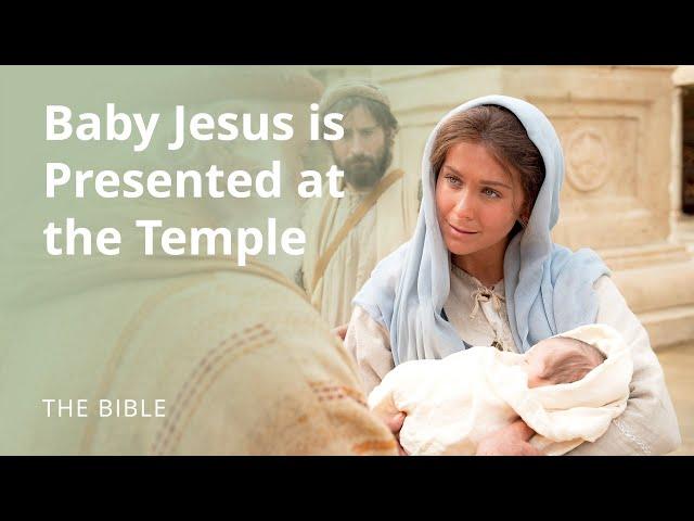 Billedresultat for jesus baby temple