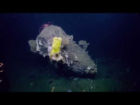 Investigating Fascinating Geological Features | Nautilus Live