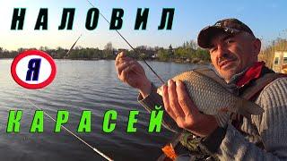 Рыбалка в Украине. Ловля карася на удочки в камышах.