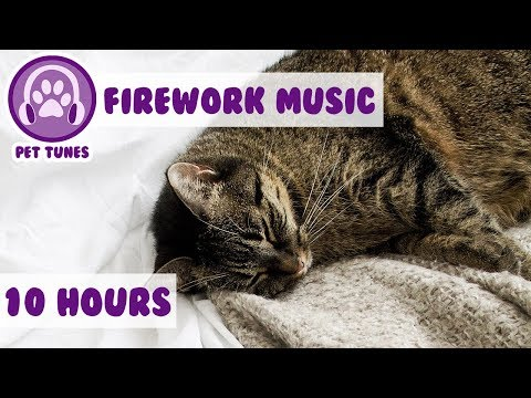 Firework Music for Cats! Bonfire Night, New Year Music for Cats Scared of Fireworks and Explosions!