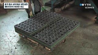 충격 흡수 바닥재로 재탄생한 폐타이어의 화려한 변신 /…