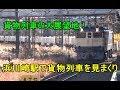 貨物萌え!浜川崎駅(南武支線)は貨物列車の大展望地【駅撮り撮影地】