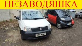 Fiat Panda 1.3 дизель не заводится масложор свечи накала ремонт двигателя