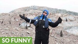 南極でオペラを歌ってみた。こうなった(ヘッドホン推奨)