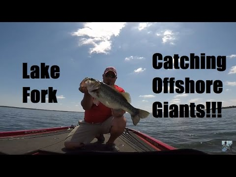 Lake Fork Bass Fishing: Big Bass Offshore