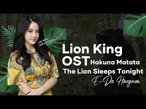 [lion-king(라이온킹)-ost]---the-lion-sleeps-tonight,-hakuna-matata-국악ver.-해금연주