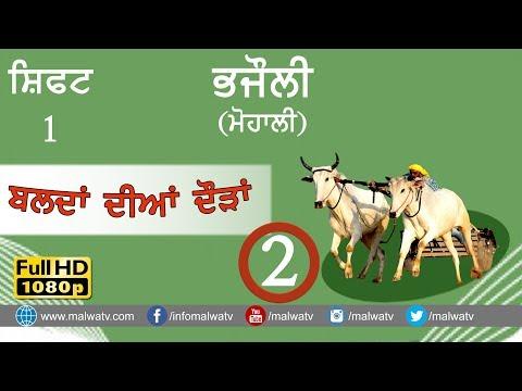 BHAJAULI (Mohali) ● OX RACE - 2018 ● SHIFT 1st ● बैल गाड़ी की दौड़ें بیل گاڑی کی دوڑے- ● Full HD  2