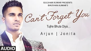 arjun cant forget you tujhe bhula diya full audio song ft jonita gandhi t series