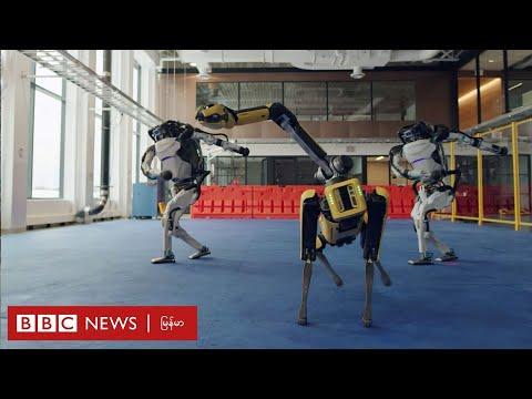 ရေခဲနဲ့ လုပ်ထားတယ် စက်ရုပ်တွေကို တွေ့ဖူးပါသလား။ ဘယ်လိုပုံစံမျိုးပါလဲ။-BBC News မြန်မာ