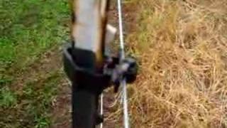 Electric Arc Across Bird Poop