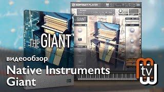 Native Instruments Giant  - видеообзор