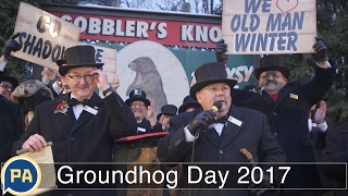 Video: Groundhog Day 2017