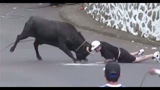 Funny videos 2018 -Stupid people doing stupid things - Bull Fighting - Bull Fails accident. funny.