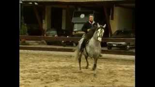 ЛОШАДИНАЯ ЭНЦИКЛОПЕДИЯ НЕВЗОРОВА 2  Лошади скачать бесплатно(Как важно хорошее отношение к лошадям прекрасные добрые благородные животные верой и правдой служат челов..., 2014-05-11T04:22:20.000Z)