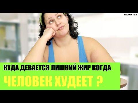 Этапы сжигания жира при похудении
