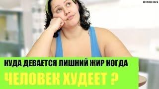 Куда девается лишний жир когда человек худеет?