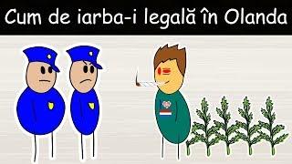 De Ce Este Iarba Legală În Olanda? - DLJ#6