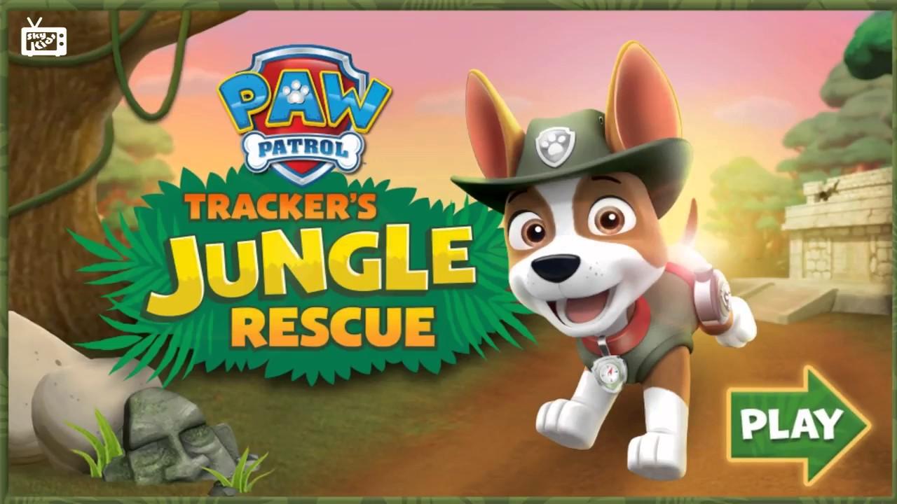 cartoni animati paw patrol