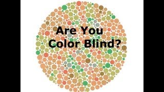 Are you Color Blind!?