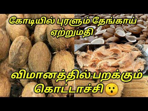 Coconut wholesale and export business full details / தேங்காய் ஏற்றுமதி வியாபாரம் பற்றிய தொகுப்பு