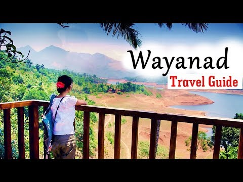 Wayanad Travel Guide | 2 Days Travel Itinerary to Wayanad in Kerala