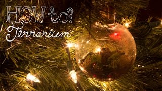 Make a Hanging/Ornament Terrarium - How To Terrarium ep.6 Christmas Edition
